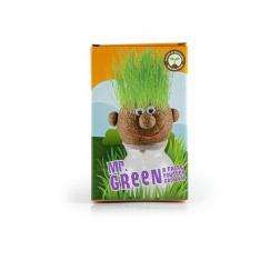 Mr Green Sur Vase