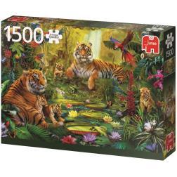 puzzle 1500 - Tigres dans la jungle