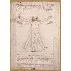 Puzzle Classique - L'Uomo Vitruviano - Da Vinci (1000 pcs)