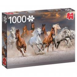 Puzzle - Desert Horses (1000pcs)